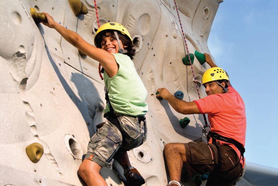 Harmony of the Seas-health-and-fitness-Rock Climbing Wall